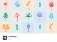 Illustrations   PureMind