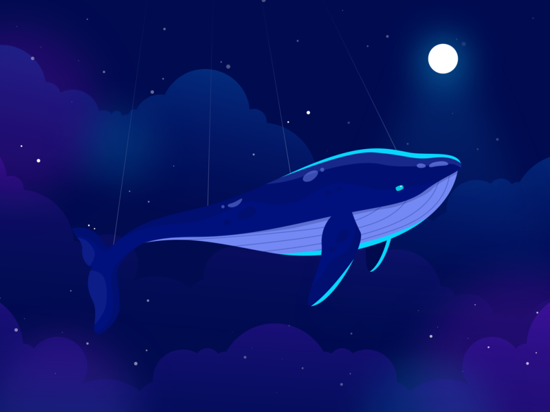 Flying Whale dream moonlight stars night illustration