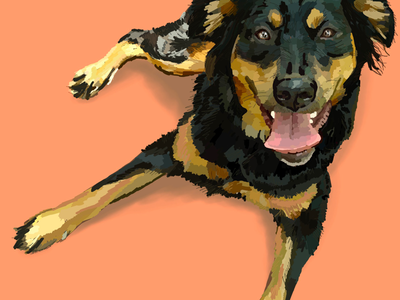 🐶 C A S S I 🐶 ipad pantone wip app vector painting dogs realistic puppy texture color ipad pro illustrator handdrawn drawing design illustration dog procreate