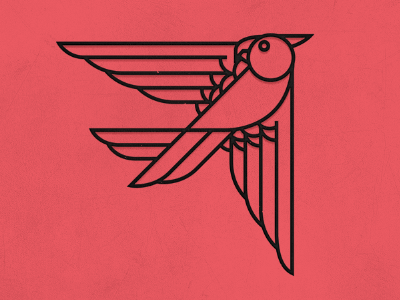 Hawk bird hawk outline texture flying
