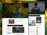 weBlogg - Blog Template Design