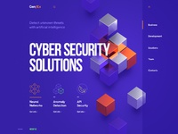 Web site design cyber security solutions