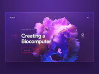 IOCO / Biocomputer