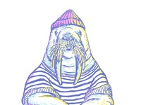 Walrus Sailor