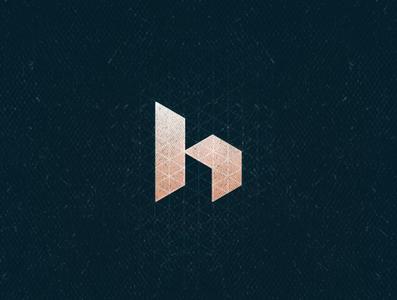 H1 grunge algeria logo monogram logo monogram isometric isometry typogaphy h aletteraday 30 day logo challenge 30daychallenge 36 days of type 36daysoftype