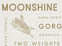 Moonshine Font | A Classic Sans Serif