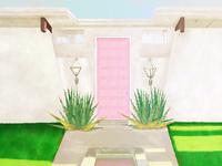 Palm Springs tour doors ( pink)