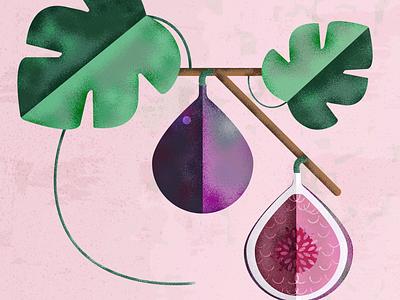 Figs creative colours art illustrator photoshop vectorart vector fruit texture illustration illustrationart flatdesign
