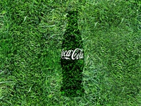 Coke Summer image
