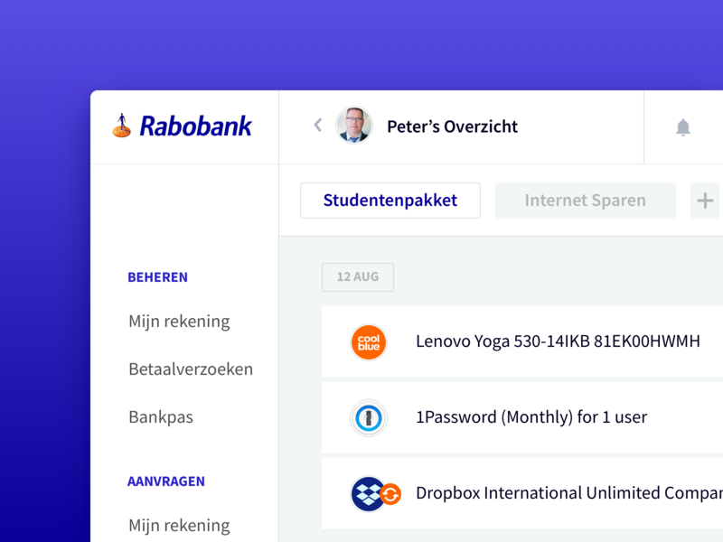 Rabobank  — Visual Branding Concept ecommerce website webapp money creditcard dashboard statistics finance payment bank