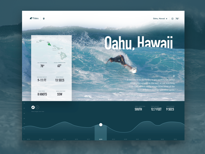 Surf Report graphs graph report application app homepage clean design interface user-interface ui