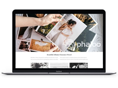 Phaloo social branding design marketing social media website
