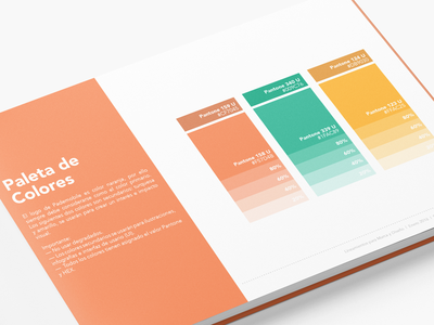 Brand Style Guide  editorial style guide color palette logo guidelines branding brand style guide