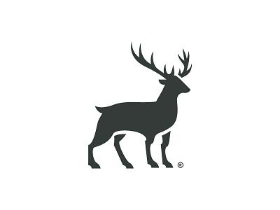 Deer design icon vector symbol logo deer identity branding