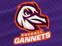 Rochall Gannets