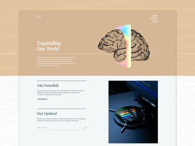 Neuralink — About about us about page html website web css grid css responsive responsive website ui web design colorful elon musk neuralink layout web development