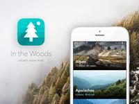 I the Woods. App case study.