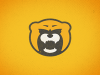 Bruins Concept