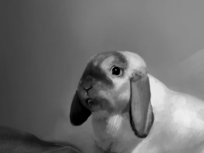 Painting - Bunny painting bunny rabbit photoshop