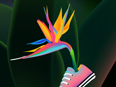 Converse of Paradise colorful bright tropic flower plant converse illustration vector