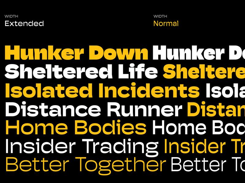 Hoss Grotesk - Updated wip prerelease typography branding custom type pstype typeface grotesk crisp font sharp