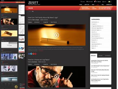 Zestt Web Blog demo design