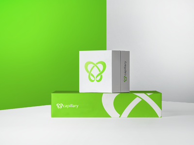 🎁 Capillary Technologies Goodie Boxes 🎁 3d goodies freebies gift goodie bag swag capillary design color logo green bag mockup presents