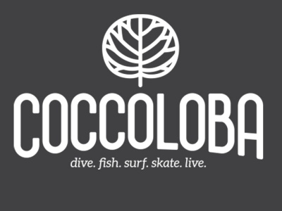 Coccoloba ux ui vector typography logo illustration icon design branding app