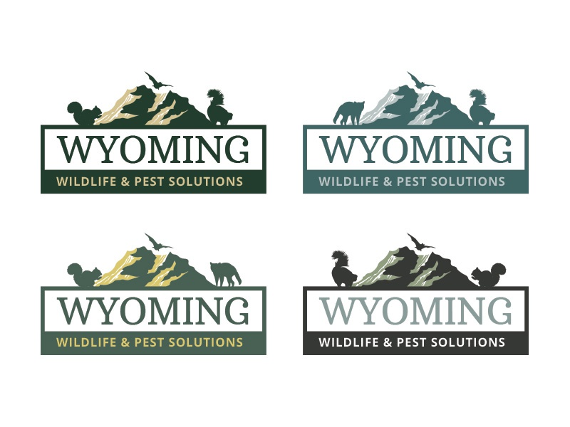 Color Options For Wyoming Wildlife Pest Solutions Ra Squrriel Outdoors Mountains