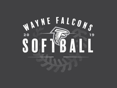2019 Wayne Falcons Softball
