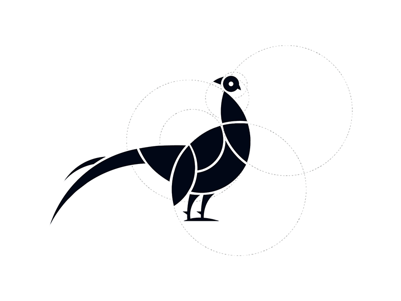 Pheasant spirit logo bird pheasant