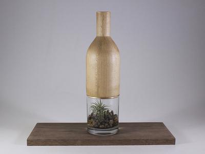 Maple and Glass Terrarium