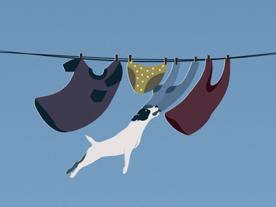 Clothesline illustration vector dog jackrussell t-shirt pants underwear socks sock top laundry hanging pegs wind windy clothesline