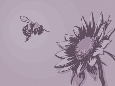 Symbiotic purple cognition illustration bee flower relationship 3-hour-rule