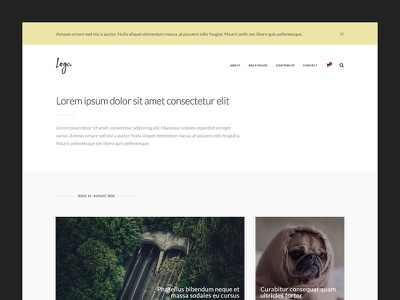 Generic Newsletter responsive newsletter website