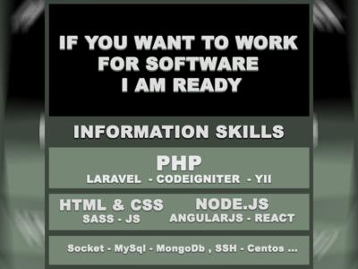 I'm looking for a Job software developer job