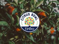 Vrbo Citrus Bowl