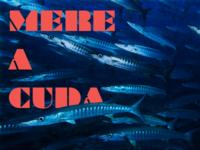 Mereacuda