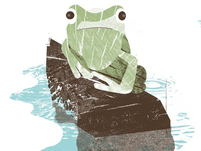 Frog Shirt shirt mockup printmaking outdoors nature frog shirt design screen printing apparel shirt