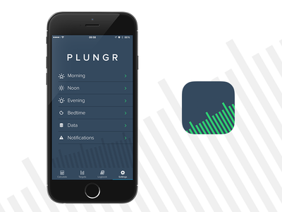 Plungr - Settings & App Icon