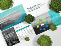 Graph, Diagram, and Data Sheet Template | Free Download