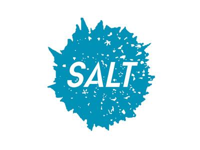 Salt Student Ministry - YouthGroupLogos.com branding logo christian logo christian church youth ministry youth group ministry customize template custom logo salt