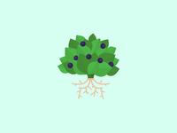 Motava Icon for Growth