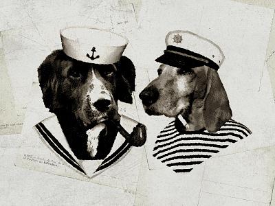 Sailor Dogs sea life salty dogs photo mockup postcard vintage illustration dogs sailors sailor dogs