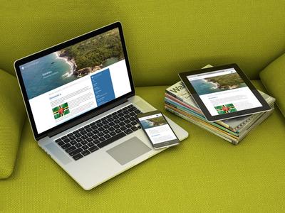Second Citizenship Website multilingual web design responsive website web design