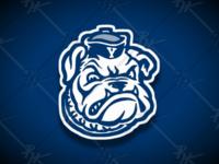 Vintage Yale Bulldogs