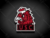 Vintage South Carolina Gamecock Mascot