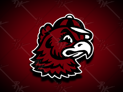 Updated Vintage Gamecock Mascot gamecocks south carolina antique basketball college ncaa classic vintage football mascot athletics sports