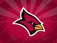 Arizona Cardinals Update Concept