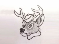 Vintage Style White-tailed Buck Mascot Sketch